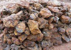 1月16日中国铁矿石价格指